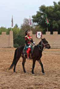 Horses - 2
